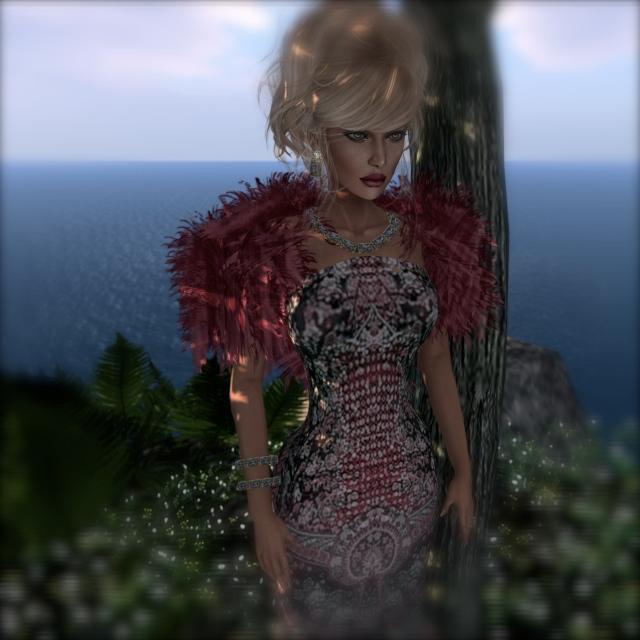 Snapshot_003